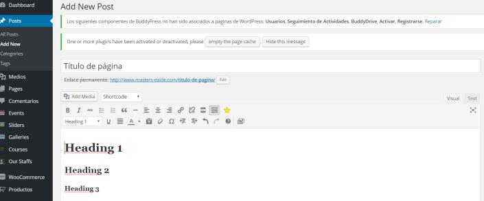 SEO wordpress posicionamiento web