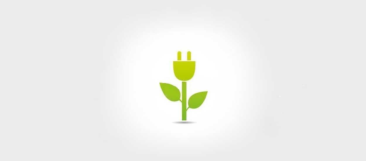 consumo sostenible marketing verde